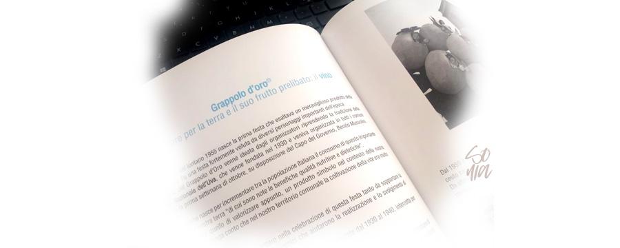 Grafica freelance - Realizzazione di un libro